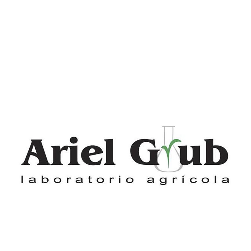 Ariel Grub copy