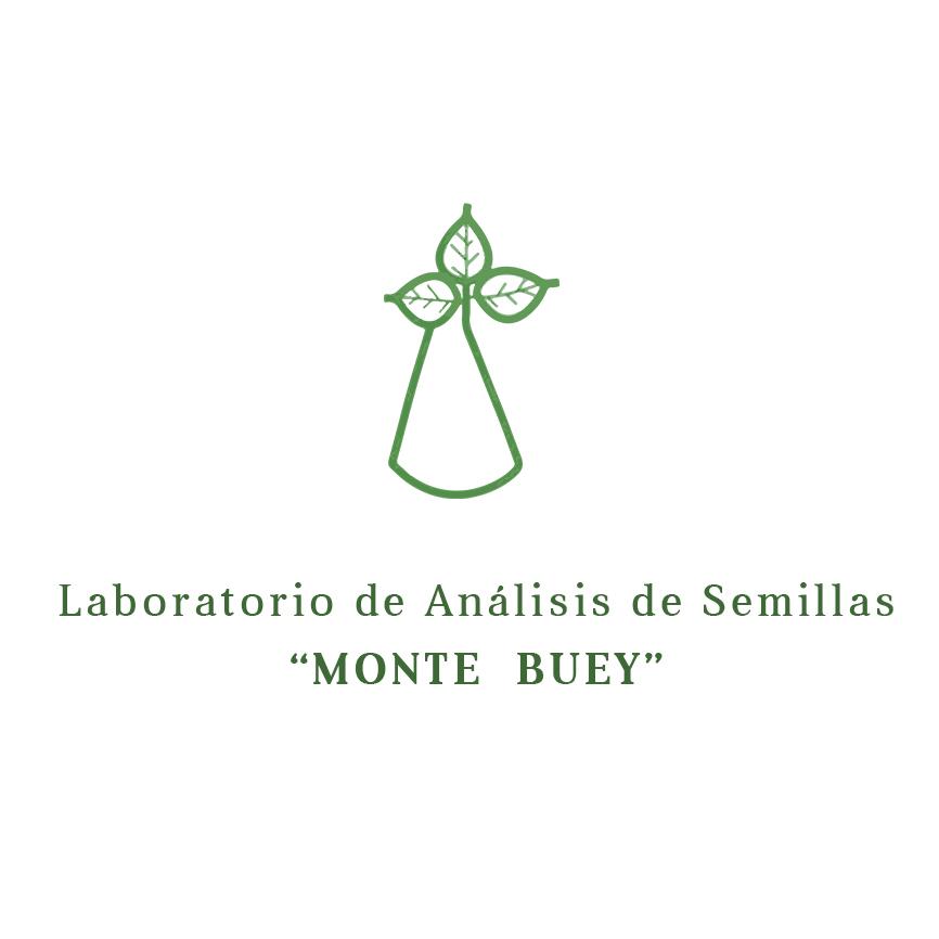 Monte buey copy