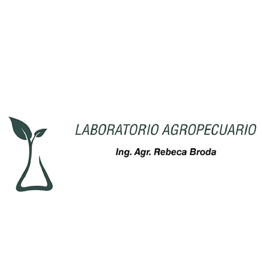 laboratorio rebeca broda